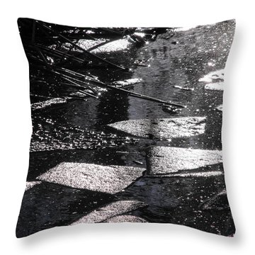 Nature's Cubism Throw Pillow