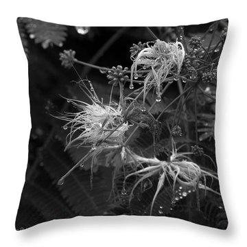 Nature's Decor Throw Pillow