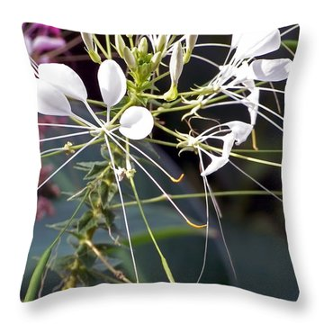 Nature's Design Throw Pillow