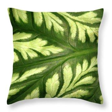 Nature's Design Throw Pillow