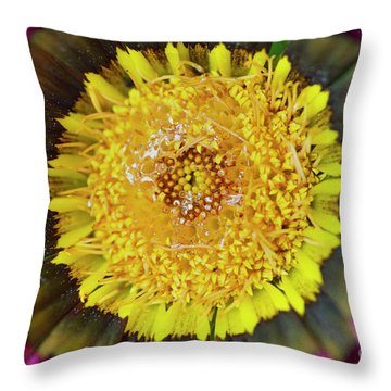 Throw Pillow featuring the photograph Natures Eye by Wendy Wilton