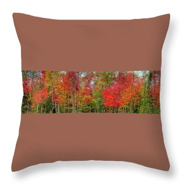 Throw Pillow featuring the photograph Natures Fall Palette by David Patterson