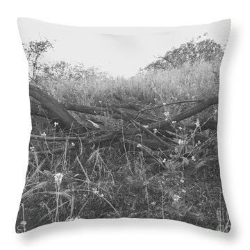 Nature's Fences Throw Pillow