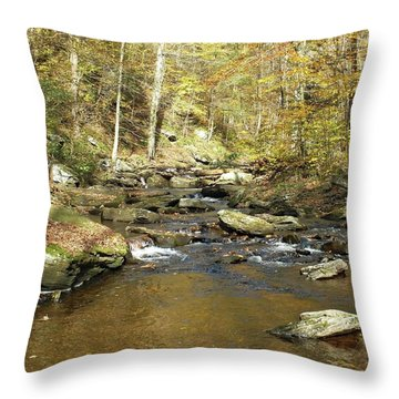 Nature's Finest 5 - Ricketts Glen Throw Pillow