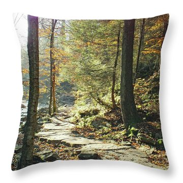 Nature's Finest - Ricketts Glen Path Throw Pillow