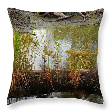 Natures Flower Pot Throw Pillow