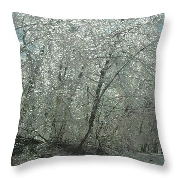 Throw Pillow featuring the photograph Nature's Frosting by Ellen Levinson