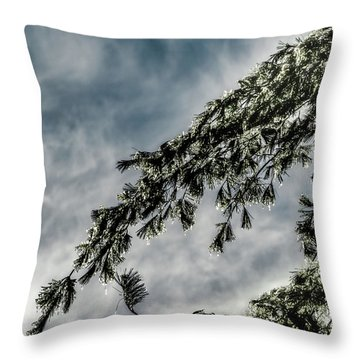 Natures Glitter Throw Pillow