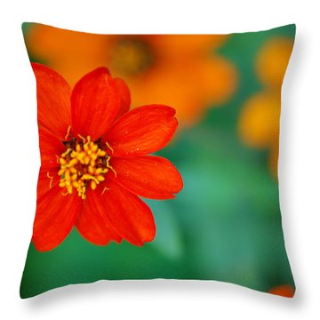 Throw Pillow featuring the photograph Nature's Glow by Debbie Karnes