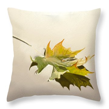 Nature's Handshake 3 Throw Pillow
