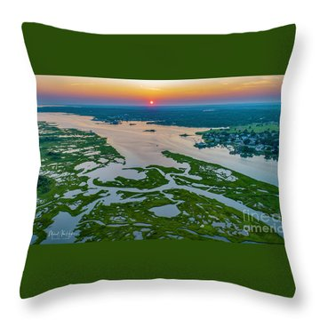 Throw Pillow featuring the photograph Natures Hidden Lines by Michael Hughes