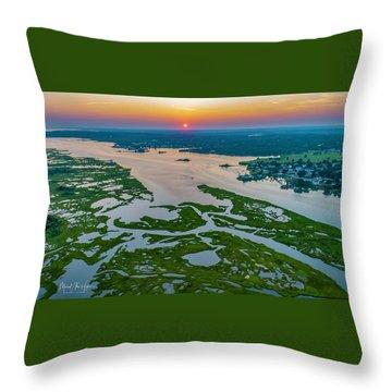 Natures Hidden Lines Throw Pillow