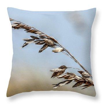 Nature's Hummingbird Throw Pillow