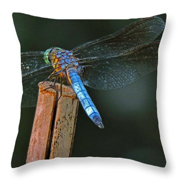 Nature's Jewel Throw Pillow