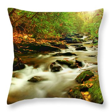 Natures Journey Throw Pillow