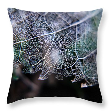 Nature's Lace Throw Pillow by Rebecca Davis