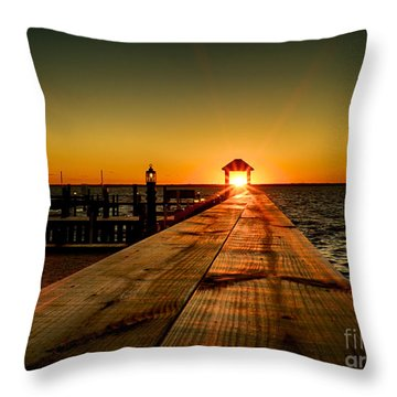Nature's Lantern Throw Pillow