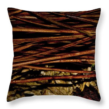 Nature's Lattice Throw Pillow by Gina O'Brien