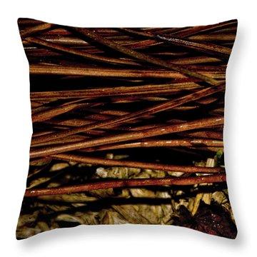 Nature's Lattice Throw Pillow