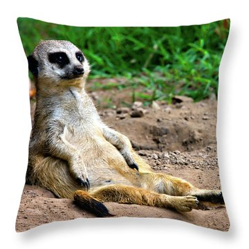 Natures Lazy Boy Throw Pillow by Lana Trussell