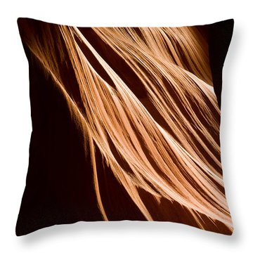 Natures Lines Throw Pillow by Adam Romanowicz