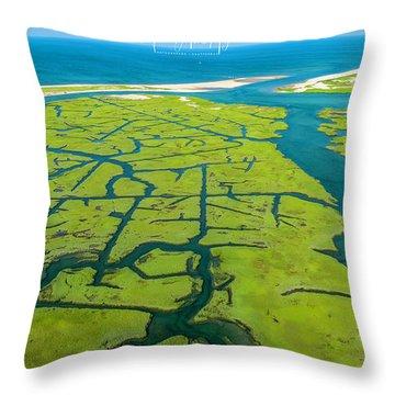 Natures Lines Throw Pillow