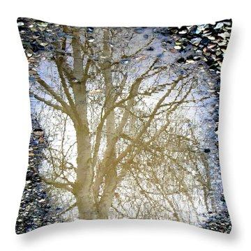 Natures Looking Glass 4 Throw Pillow