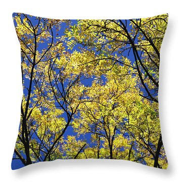 Throw Pillow featuring the photograph Natures Magic - Original by Rebecca Harman