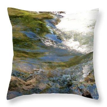 Nature's Magic Throw Pillow