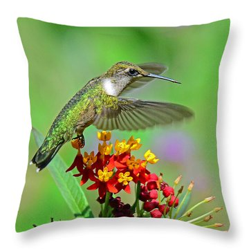 Throw Pillow featuring the photograph Nature's Majesty by Rodney Campbell
