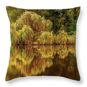 Nature's Mirror Throw Pillow
