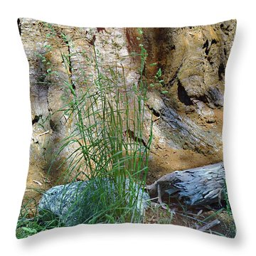Natures Own Abstract Throw Pillow