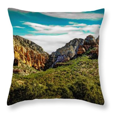 Natures Paintbrush Throw Pillow by Jon Burch Photography