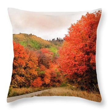 Nature's Palette Throw Pillow