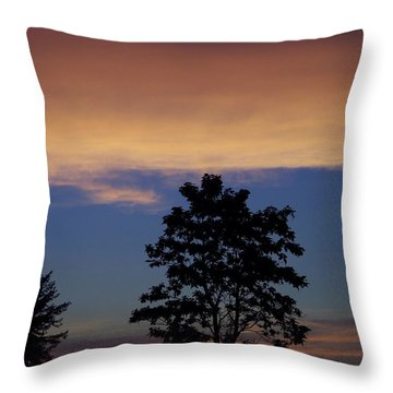 Natures Palette Throw Pillow