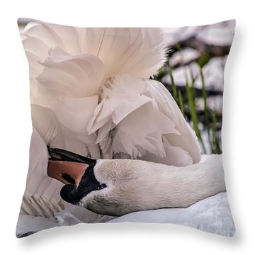 Natures Parasol Throw Pillow
