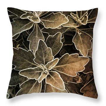 Natures Patterns Throw Pillow