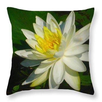 Natures Perfection  Throw Pillow