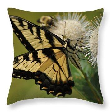 Natures Pin Cushion Throw Pillow