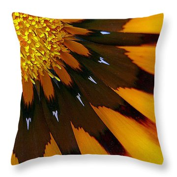 Nature's Pinwheel Throw Pillow
