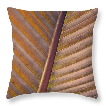Throw Pillow featuring the photograph Nature's Plant Leaf  by Julie Palencia