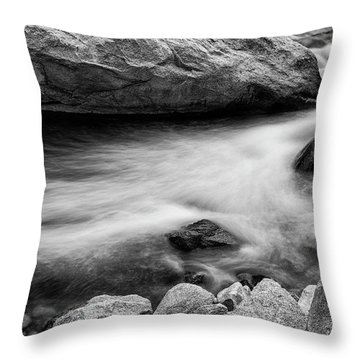Nature's Pool Throw Pillow by James BO Insogna