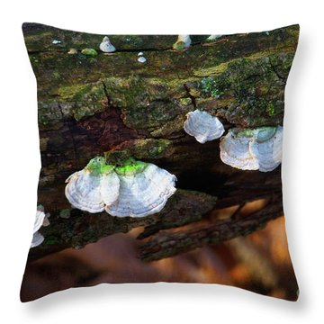 Throw Pillow featuring the photograph Natures Ruffles - Cascade Wi by Mary Machare