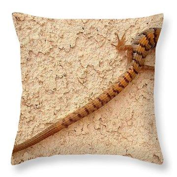 Natures S Curve Throw Pillow