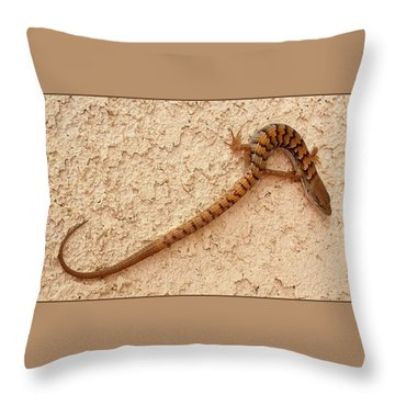 Natures S Curve Throw Pillow