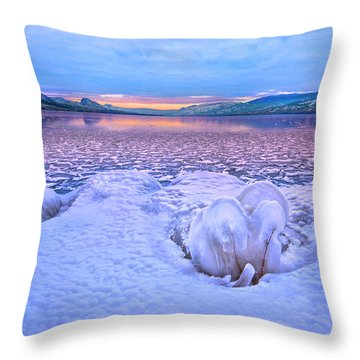Throw Pillow featuring the photograph Nature's Sculpture by John Poon