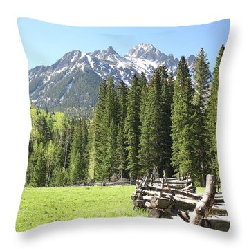 Nature's Song Throw Pillow by Eric Glaser
