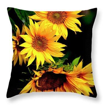Natures Sunflower Bouquet Throw Pillow