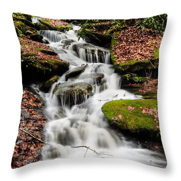 Natures Surprise Throw Pillow by Debbie Green