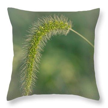 Natures  Tail Throw Pillow